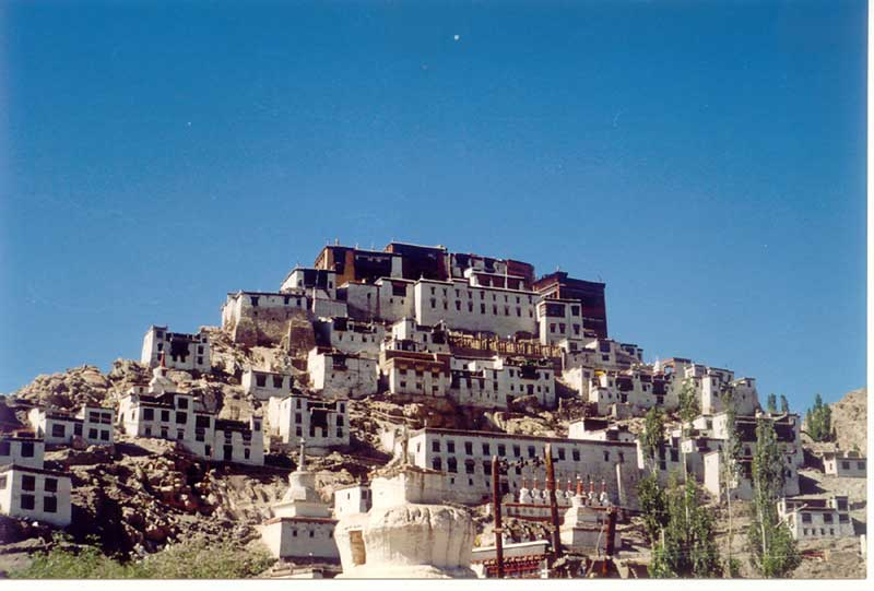 Houses blending with nature in Leh, Ladakh, India