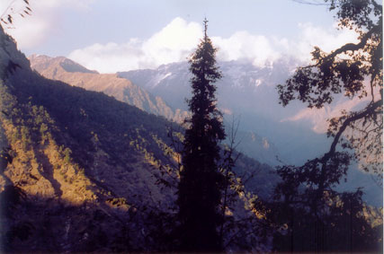 Overview of Kedarnath Wildlife Sanctuary, India